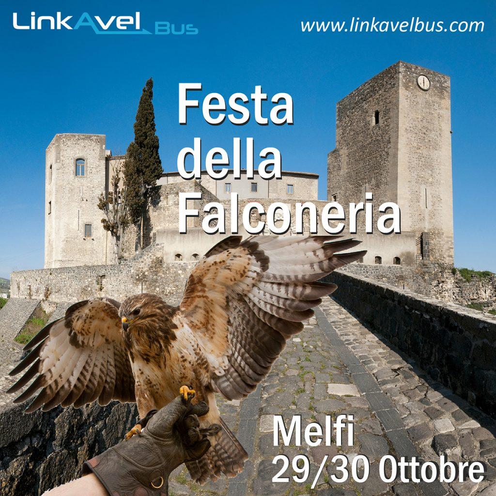 Post Festa della Falconeria